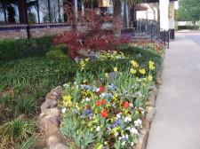 Qualicare Landscape Maintenance Irrigation Services 4